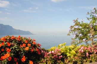 Idyllic by the lakeside in Montreux