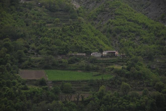 Mountain farm.