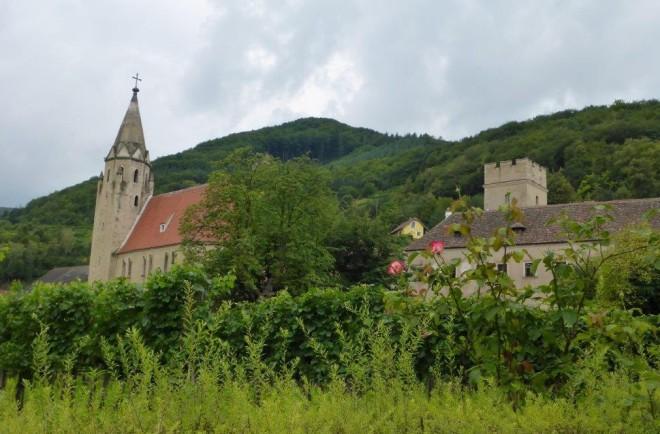By Weissenkirchen between Spitz and Krems in the Wachau area, Austria 2