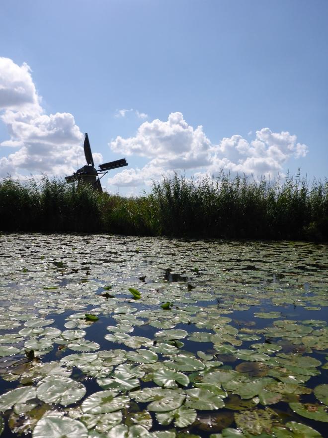 Mills in Kinderdijk 1