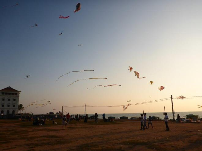Kites flying high at Galle Face Green in Colombo