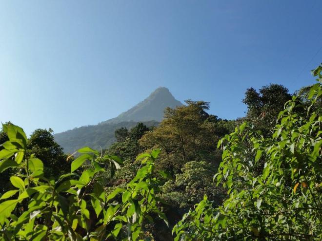Lookig back at Adam's Peak