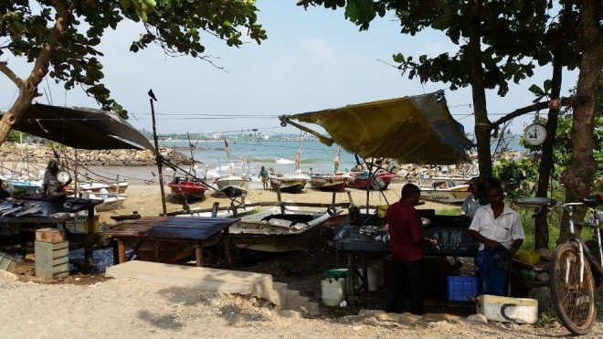 Fishermen selling their fish outside the walls of Galle Fort