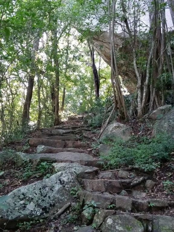 Stone steps leadig to the top of Pidurangala Rock.