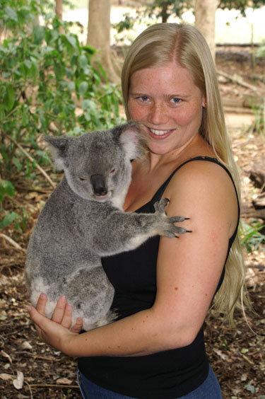 Cuddle a koala in Australia