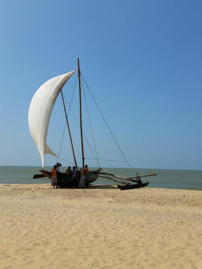 Set sail at the beach in Negombo, Sri Lanka.