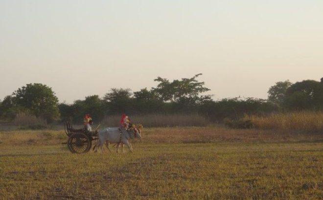 Along the road. Bagan, Myanmar