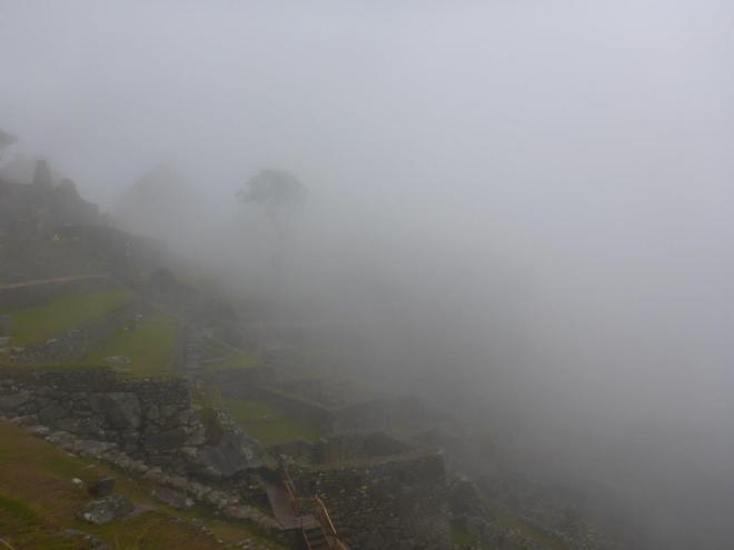 I made it up to the ruins of Machu Picchu. Continuing to go to Huayna Picchu at the other side.