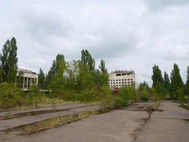 Nature is taking over. Pripyat, Chernobyl, Ukraine
