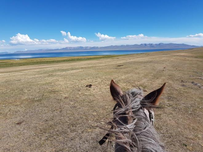 Horse and Song Kul. Three day horse-riding trip to Song Kul, Kyrgyzstan.