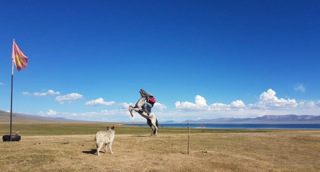Kalybek with his horse. And loyal dog. Three day horse-riding trip to Song Kul, Kyrgyzstan.