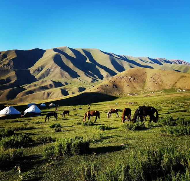 My first yurt camp. What a picture perfect place to spend the night! Three day horse-riding trip to Song Kul, Kyrgyzstan.