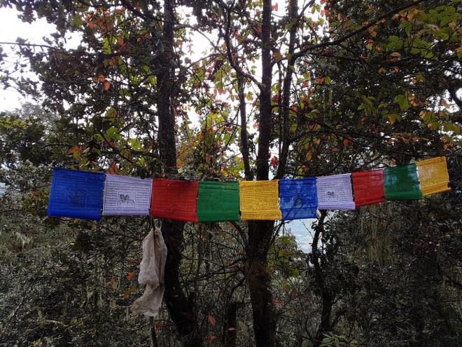 Prayer flags in the wind. Tiger's Nest. Paro Taktsang. Bhutan.
